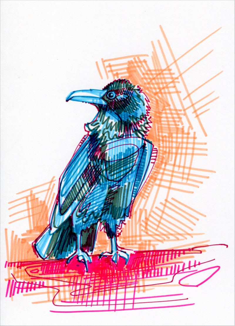 corbeau illustration
