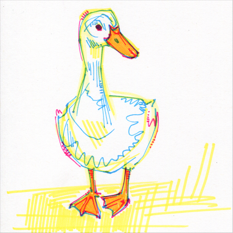 canard illustration