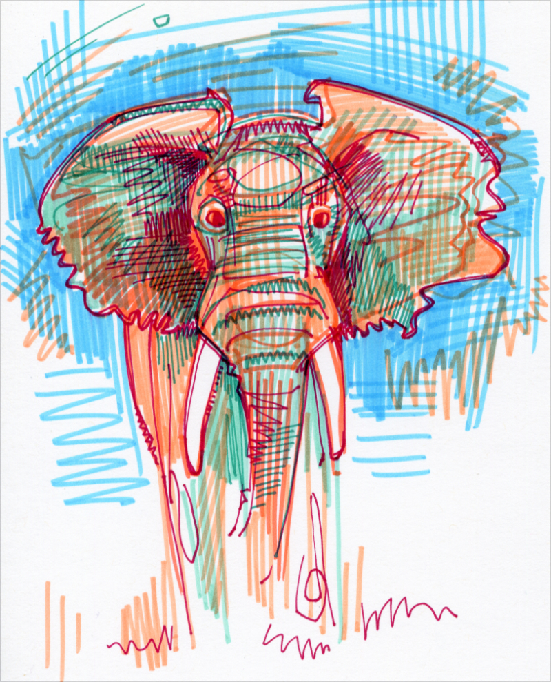éléphant illustration