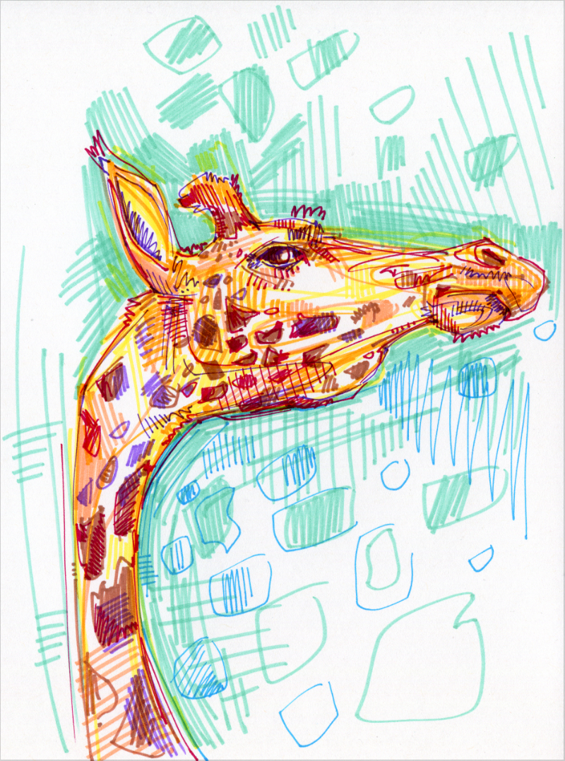 girafe illustration