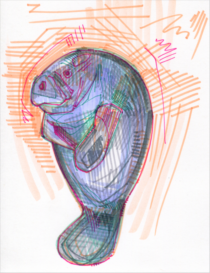 manatee colorful drawing