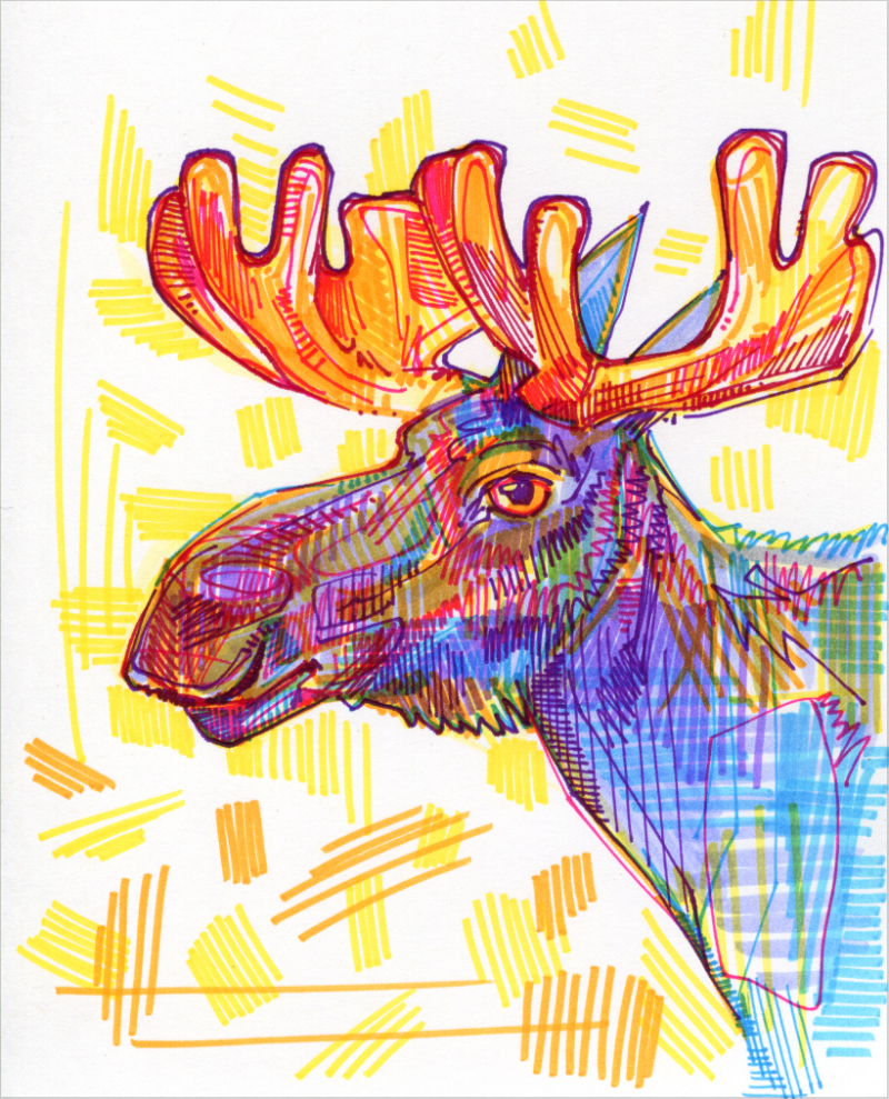 moose colorful drawing