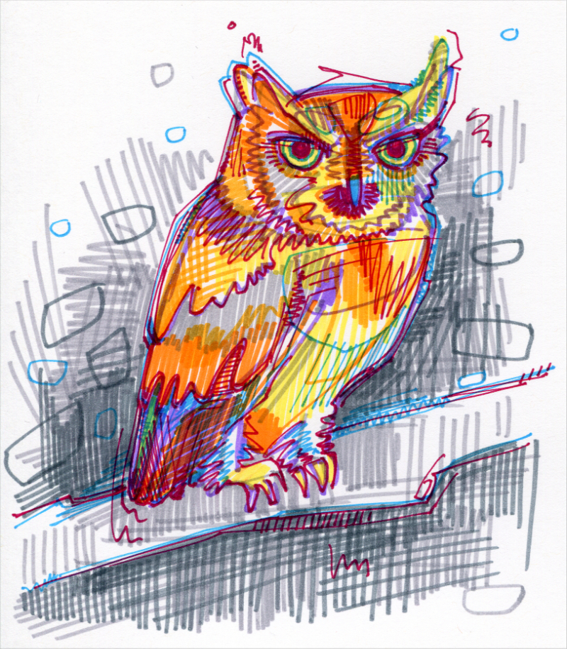 hibou illustration