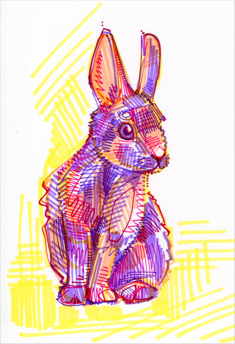 lapin illustration