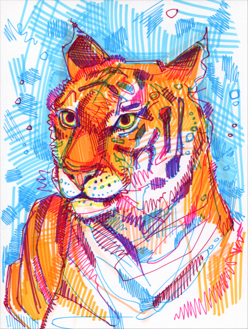 tigre illustration