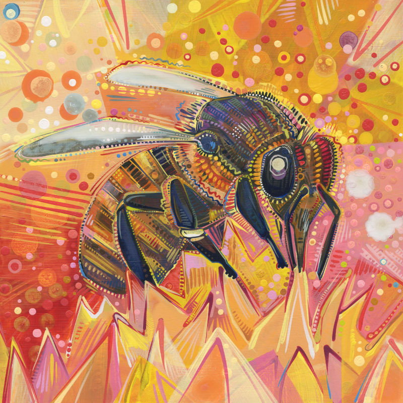 painting of a Western honey bee