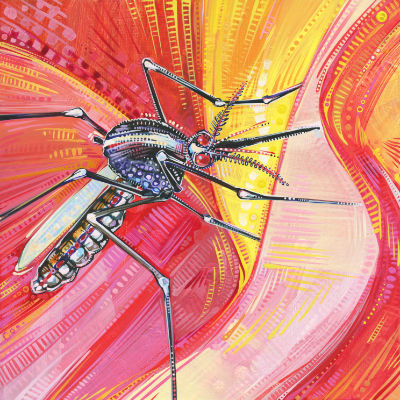 close up painting of a mosquito