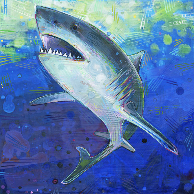 painting of a great white shark