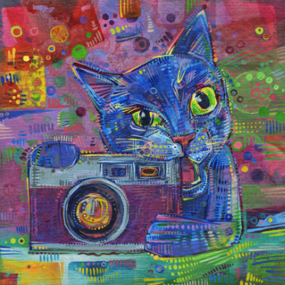 cat chewing on a camera art