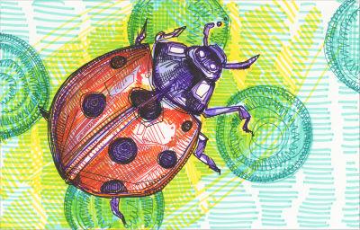 ladybug art
