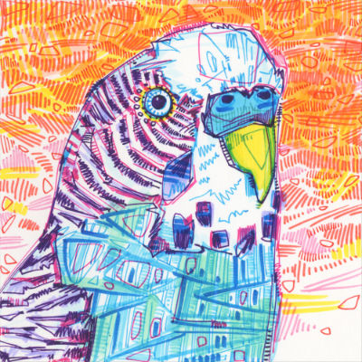 parakeet drawing in marker on paper