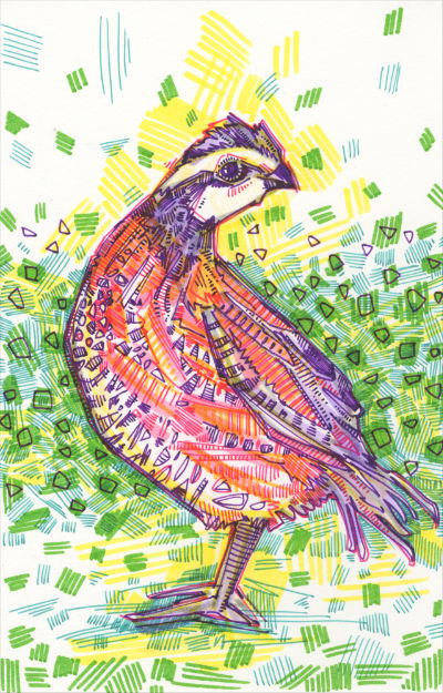 quail art