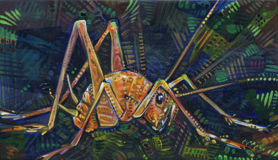 Asian camel cricket painting