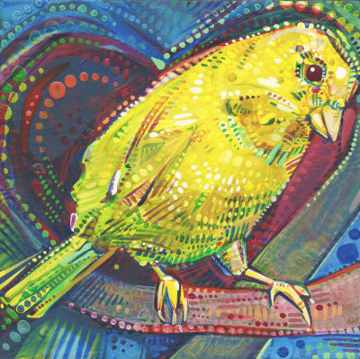 canary bird art