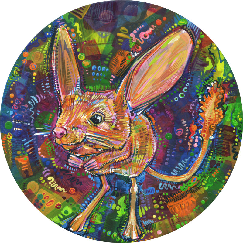 jerboa art