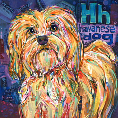 H is for Havanese dog, illustration pour un livre d'alphabet anglophone